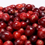 Our genealogy researcher sees cranberries in the same light as an ancestor search.